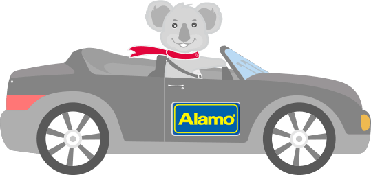 Alamo Terms and Conditions